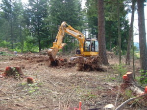 site evaluation, site preparation, home construction, door county,